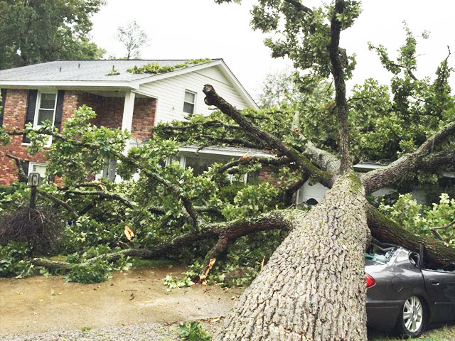 Need Home Repair From Storm Damage On Hilton Head